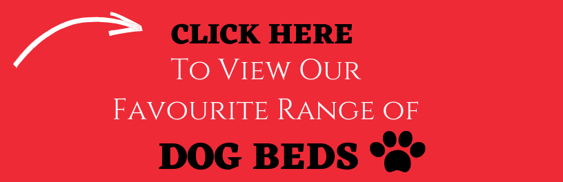A call to action button.Dog beds and why your dog needs one in New Zealand