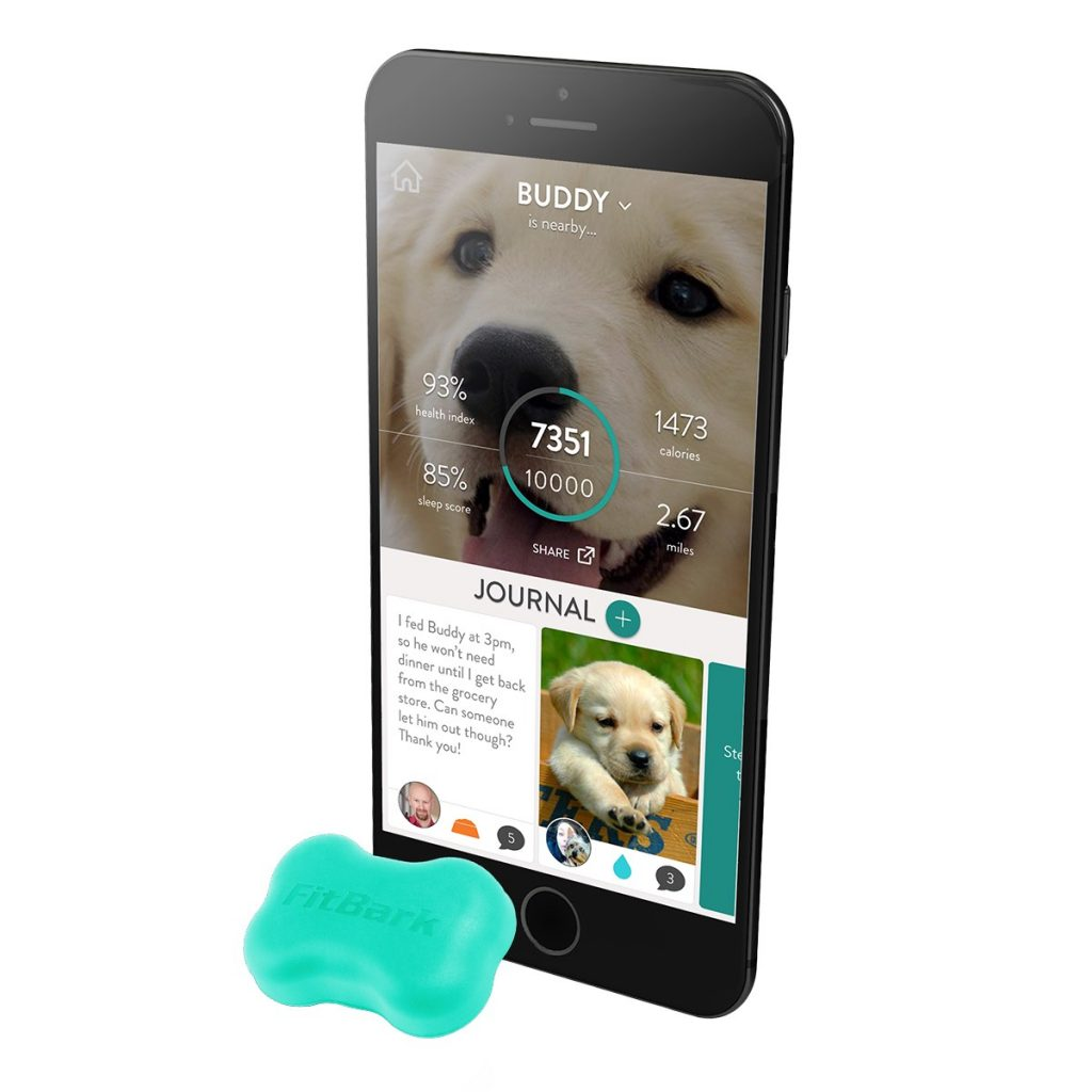 Fitbark 2 dog care sends information about your dogs activity straight to your smart phone or table