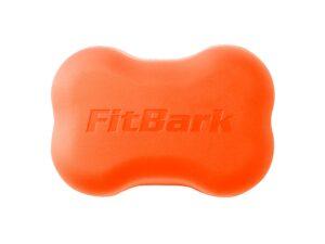 FitBark 2 Orange