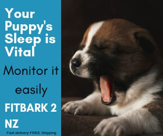 puppy yawning. Fitbark 2 sleep and activity monitor