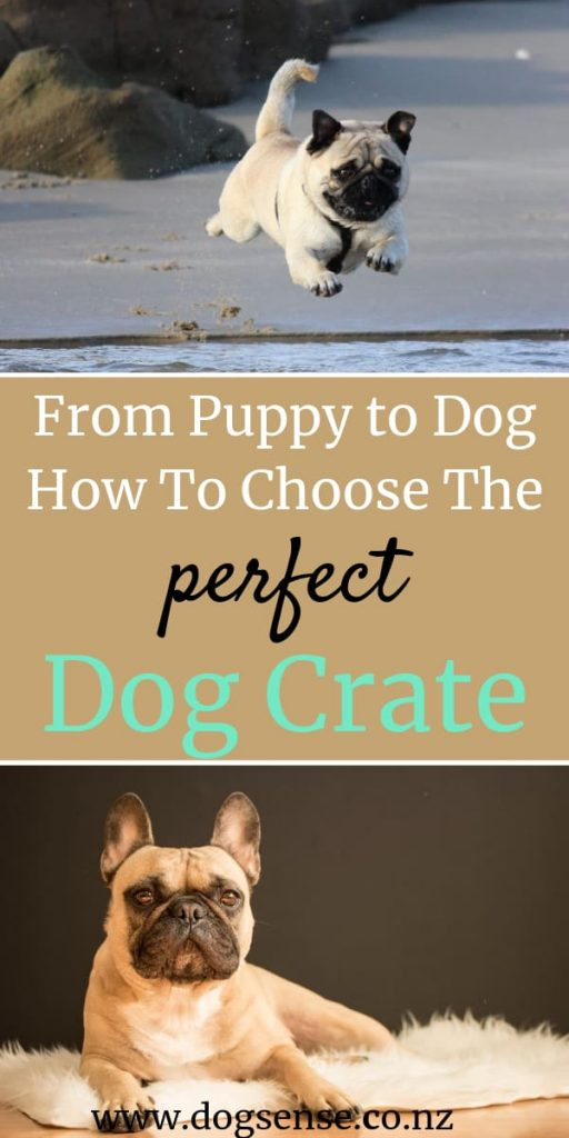 dog crates. How to choose the perfect ones for your puppy or older dog