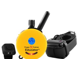 FT-330 Finger trainer button together with the finger trainer remote and RX-090 receiver